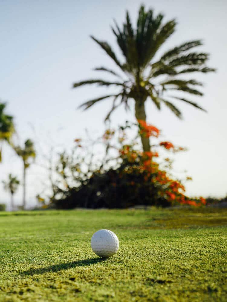 golfball on fairway